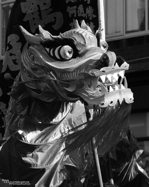 dragon12