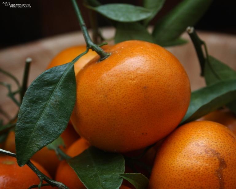 fruit2903