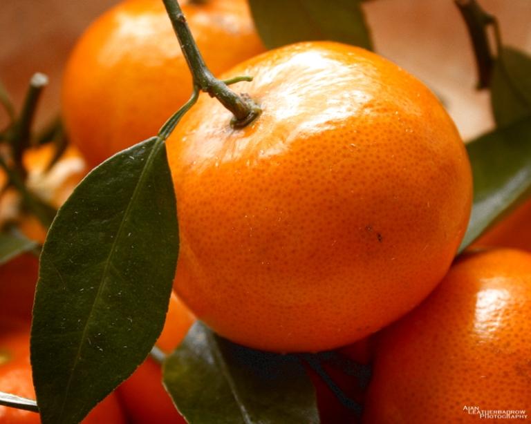 fruit29032