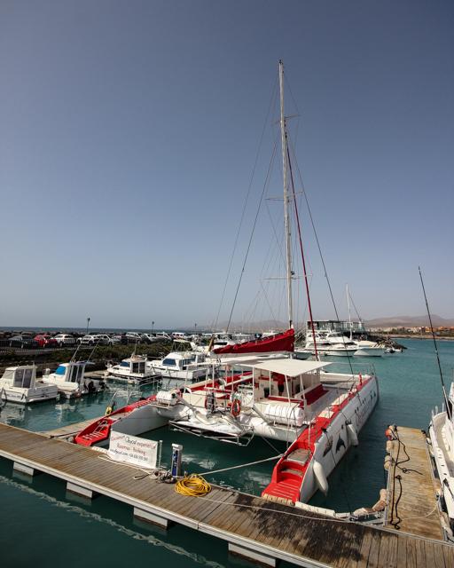 catamaran-7648