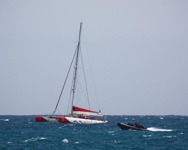 catamaran-7776