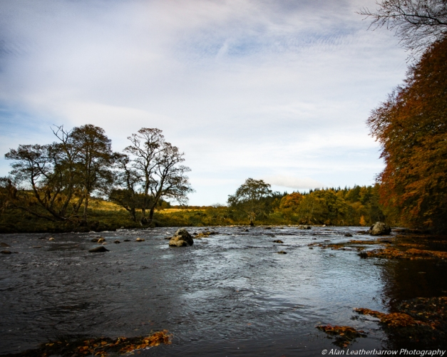 autumnalstream-8606