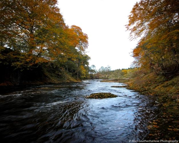 autumnstream-8591