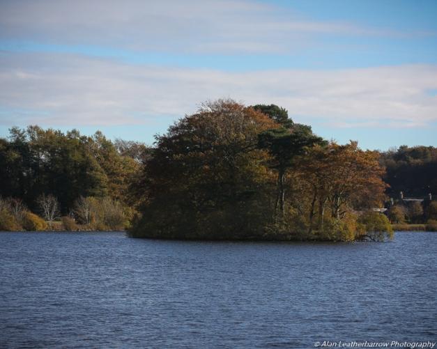 lake-8729