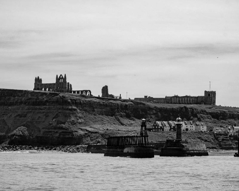 Whitby-9599